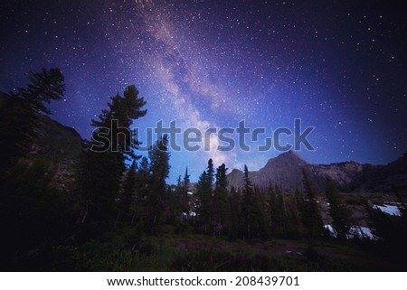 The Milky Way and some trees. In the mountains of Sayan in Russia - stock photo