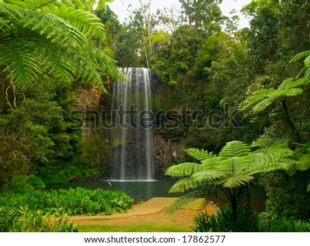 The Millaa Millaa falls in Queensland Australia - stock photo