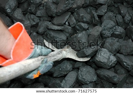 The miner is picking up coal with shovel - stock photo