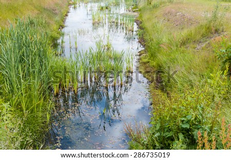 The mirror smooth surface of the small stream with reeds and water plants reflects the cloudy skies. - stock photo