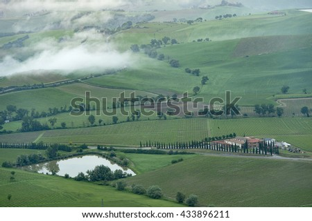 the mist at Green field near pienza  city Tuscany italy