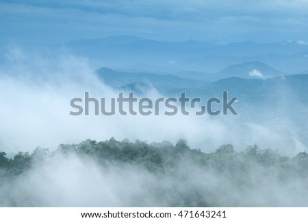 the mist moving across green forest and mountain with blue sky background
