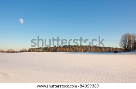 The moon above a winter forest - stock photo