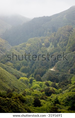 The morning mist lifting from a remote valley in Big Sur, California. - stock photo