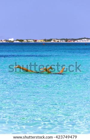 The most beautiful sandy beaches of Apulia: water games.Porto Cesareo marine,Salento coast. ITALY (Lecce) - stock photo
