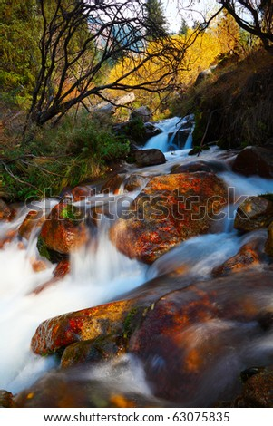 The mountain river - stock photo