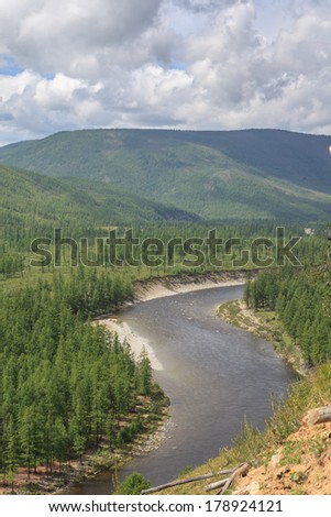 The mountain river. A summer landscape.