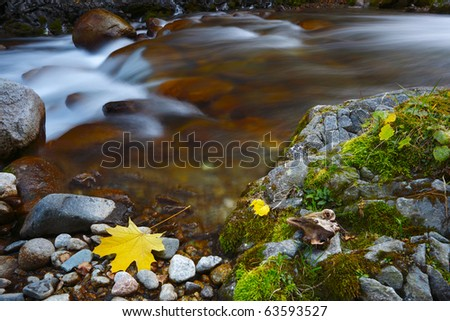 The mountain river in the autumn