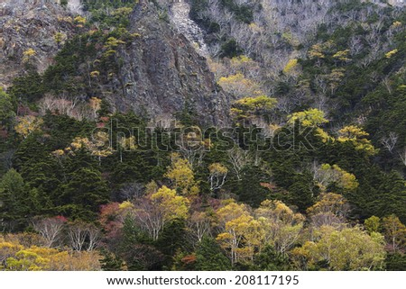 The Mountains With Autumn Leaves And A Peak