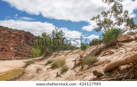 The Murchison River gorge riverbed with tumblagooda red and white banded sandstone and plants in the Kalbarri National Park in Western Australia/Murchison River Gorge/Kalbarri National Park