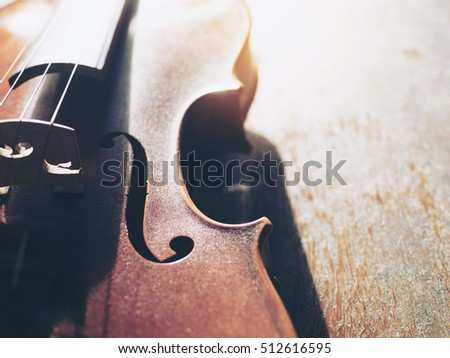"The musical instrument ""violin""."