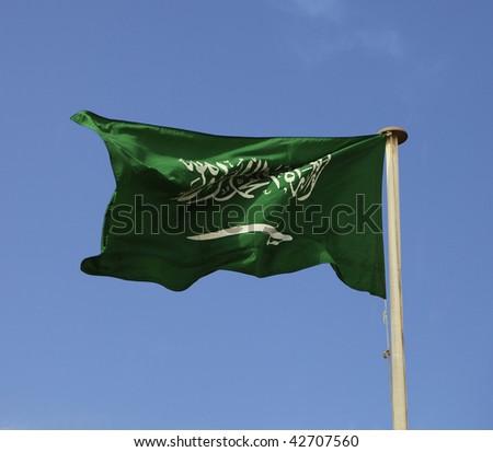 The national flag of Saudi Arabia - stock photo