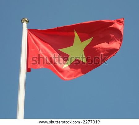 The national flag of Vietnam - stock photo