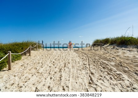 The natural beauty of Miami Beach on a clear blue sky day. - stock photo