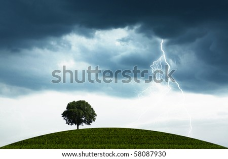 The natural landscape with the storm, overcast sky and lonely tree - stock photo