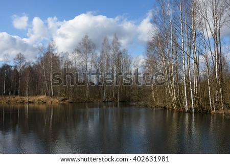 The nature of spring in the forest. Reflection of trees in water. The lake and the birch grove in early spring #4 - stock photo
