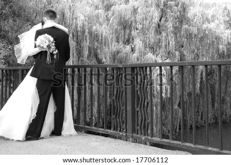 The newly married couple is kissing on the bridge - stock photo