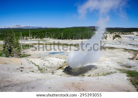 The Norris Geyser Basin in Yellowstone National Park USA