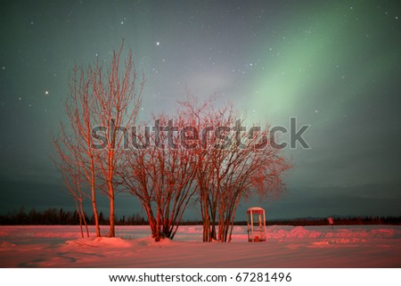 The northern lights glow over a telephone booth and group of trees in the arctic circle at Bettles, Alaska.  Horizontal shot. - stock photo
