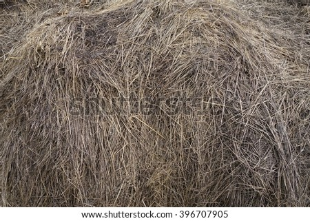 The old dry hay - stock photo