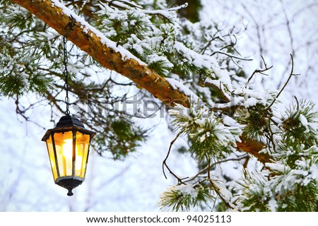 The Old Fashioned Lantern Hanging At Winter Branch Of Pine Trees Snow