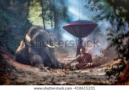 The old monk with a young elephant in the forest. - stock photo