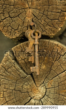 The old rusty keys hanging on a wooden wall - stock photo