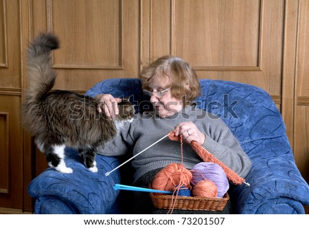 The old woman sits in an armchair and stroke a cat - stock photo