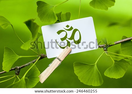 The Om Sign in a Ginkgo Tree - stock photo