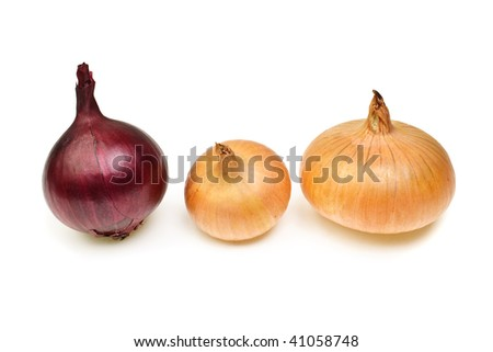 The onions are isolated on a white background