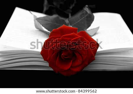 The open book and a red rose on a black background - stock photo