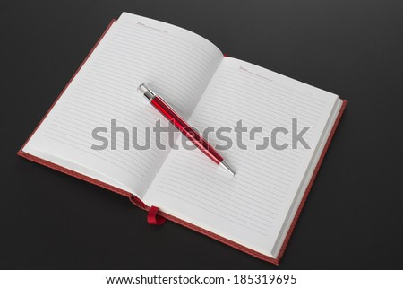 The open book and pen  - stock photo