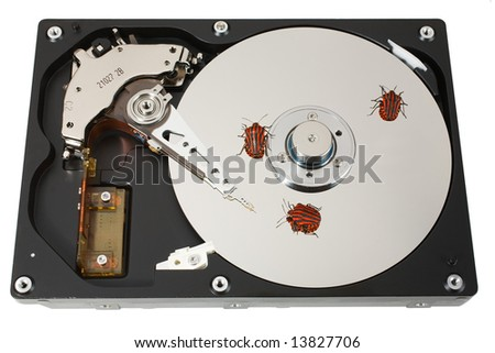 The open hard disk with three bugs. Ñoncept of information errors. Isolated on white.