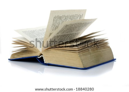 The opened book - stock photo