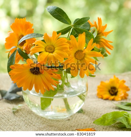 The orange flowers of calendula in glass vase. Selective focus