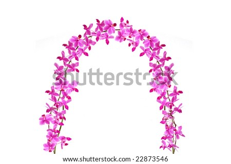 The Orchid Gate - stock photo