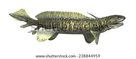 The Orthacanthus was a prehistoric shark that lived during the Devonian and Triassic Periods - 3d render. - stock photo