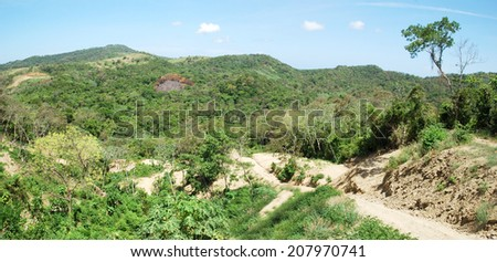 The panoramic view of a path leading to the jungle on Roatan island (Honduras). - stock photo