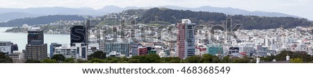 The panoramic view of Wellington downtown, the capital of New Zealand.