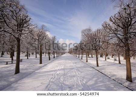 The path in park is filled up by snow, on snow traces