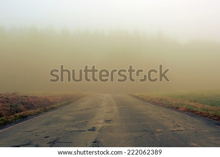 The path in the autumn morning fog - stock photo