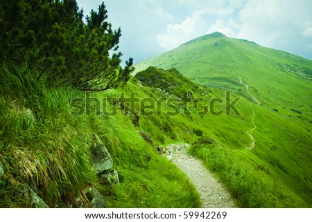 The path in the mountains with green valleys - stock photo