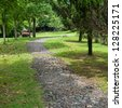The path in the park. - stock photo