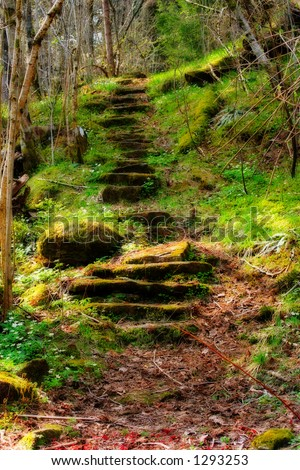 The Path (Processed for a mystical look) - stock photo