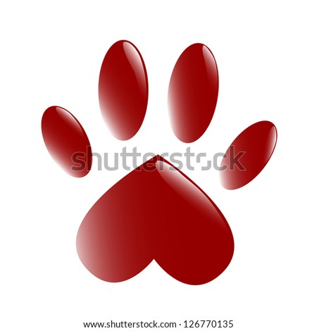 The paw - stock photo