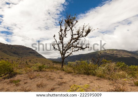 The peaks of the Andes Mountains - stock photo