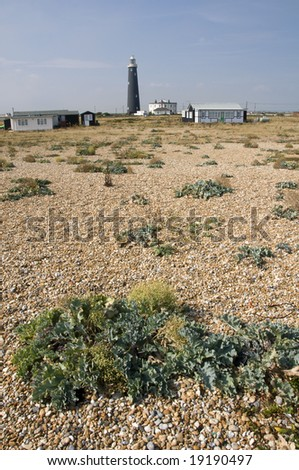 The pebble beach at Dungeness with the old lighthouse in the distance - stock photo