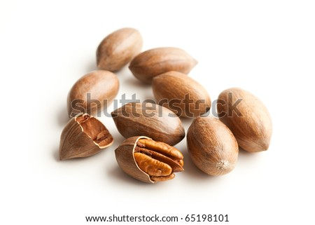 the pecan nuts on white background - stock photo