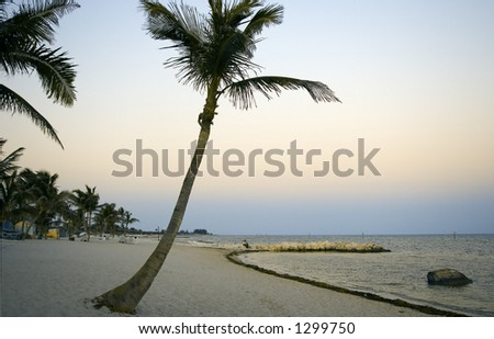 The perfect beach - stock photo
