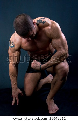The Perfect muscular man posing isolated on black background - stock photo